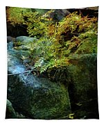 Rainbow Autumn Ferns At Pickle Creek 6303 H_3 Tapestry