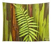 Rainbow Eucalyptus And Fern Tapestry