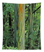 Rainbow Eucalyptus Tapestry