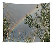 Rainbow In The Trees Tapestry
