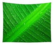 Raindrops ... Tapestry