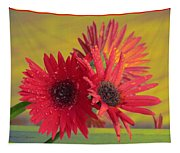 Raindrops On Gerbera Tapestry