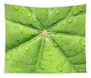 Raindrops On Leaf Tapestry