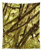 Rainforest Drama Tapestry