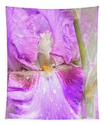 Raindrops On Persian Berry Iris Tapestry