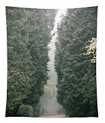 Rainy Gloomy Alley In Park Tapestry