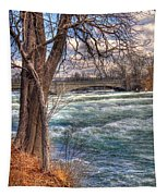 Rapids In Fall Tapestry