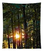 Rays Of Dawn Tapestry