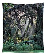 Rays Of Sunlight Tapestry