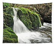 Reany Falls 1 Tapestry