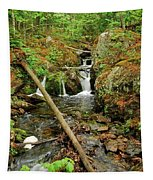 Reany Falls 2 Tapestry