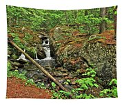 Reany Falls 3 Tapestry