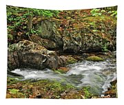 Reany Falls 4 Tapestry