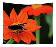 Red Admiral Nectaring On Tithonia Tapestry