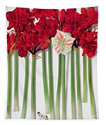 Red Amaryllis With Butterfly Tapestry