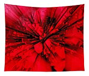Red And Black Explosion Tapestry
