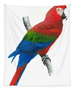 Red And Green Macaw Tapestry