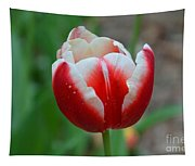 Red And White Bloom Tapestry