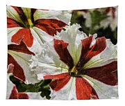 Red And White Petunia Tapestry