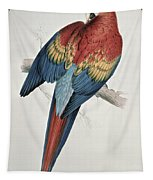 Red And Yellow Macaw  Tapestry