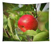 Red Apple On A Tree Tapestry