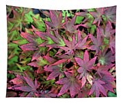 Red Bark Maple Leaves  Tapestry