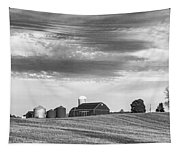 Red Barns Bw Tapestry