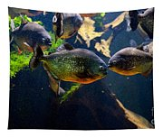 Red Bellied Piranha Or Red Piranha Tapestry