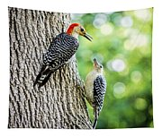 Red-bellied Woodpeckers Tapestry