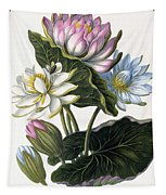 Red, Blue, And White Lotus Flowers Tapestry