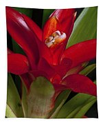 Red Bromiliad Tapestry