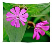 Red Campion - Fairy Flower. Tapestry