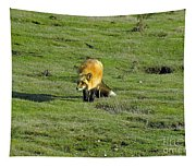 Red Fox Tapestry
