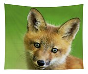 Red Fox Pup Tapestry