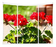 Red Geraniums Triptych Tapestry