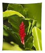 Red Ginger Flower Tapestry