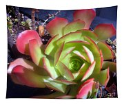Red Green Succulent Tapestry