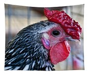 Red Hat Chicken Tapestry