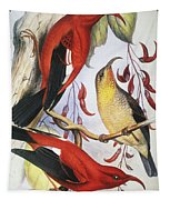 Red Hawaiian Honeycreeper Tapestry