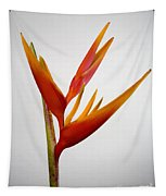 Red Heliconia Tapestry
