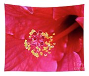 Red Hibiscus 3 Tapestry