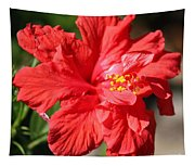 Red Hibiscus Square Tapestry