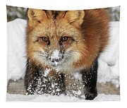 Red Hunter Tapestry