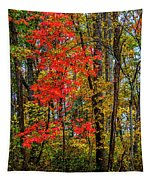 Red Leaves Of Autumn Tapestry