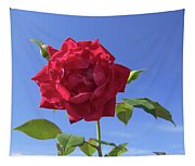 Red On Blue Tapestry