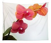 Red Pink Golden Orchid Flowers 03 Tapestry