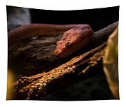 Red Poisonous Snake Tapestry