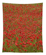 Red Poppies 2 Tapestry