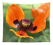 Red Poppy I Tapestry