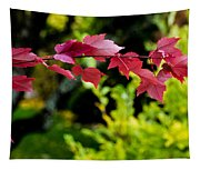 Red Red Maple Leaves Tapestry